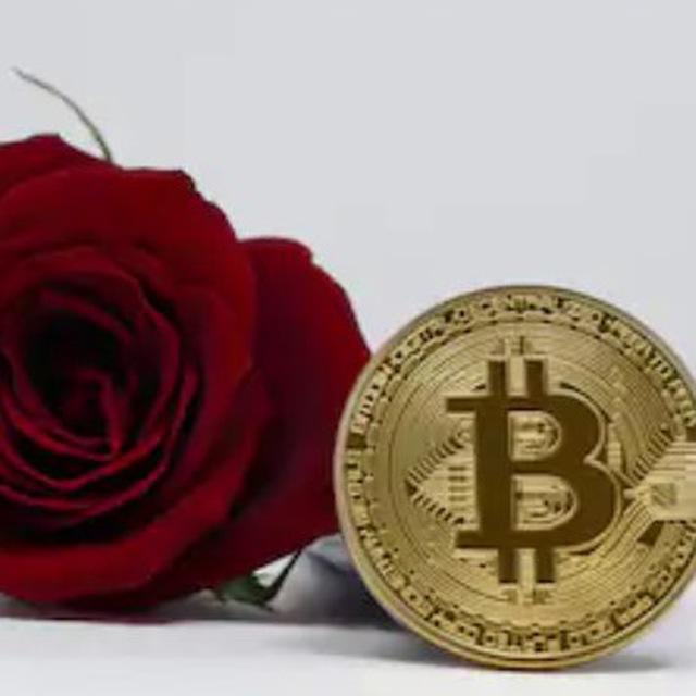 Rose VIP / Bitmex